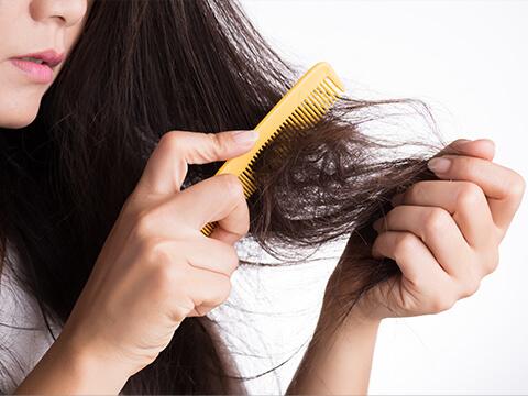 【医師監修】抜け毛を防ぐ、頭皮に優しいブラッシングとは